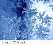 Купить «Морозный узор», фото № 216821, снято 21 ноября 2018 г. (c) ElenArt / Фотобанк Лори