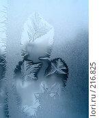 Купить «Ледяной узор», фото № 216825, снято 21 января 2020 г. (c) ElenArt / Фотобанк Лори