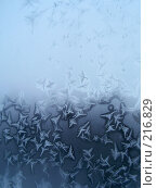 Купить «Морозный узор на окне», фото № 216829, снято 27 мая 2018 г. (c) ElenArt / Фотобанк Лори