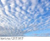 Купить «Голубое небо», фото № 217917, снято 16 сентября 2019 г. (c) ElenArt / Фотобанк Лори