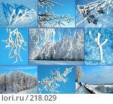 Купить «Зима», фото № 218029, снято 18 июля 2019 г. (c) ElenArt / Фотобанк Лори