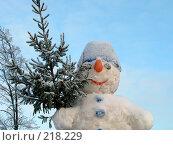 Купить «Снеговик», фото № 218229, снято 17 декабря 2018 г. (c) ElenArt / Фотобанк Лори