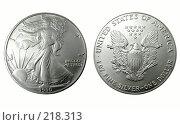 Купить «Американский серебряный доллар 1990 года», фото № 218313, снято 17 августа 2018 г. (c) ElenArt / Фотобанк Лори