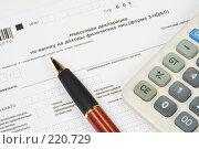 Купить «Заполнение налоговой декларации», фото № 220729, снято 10 марта 2008 г. (c) Мельников Дмитрий / Фотобанк Лори
