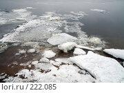 Купить «Река Нева, льдины на берегу», фото № 222085, снято 7 февраля 2008 г. (c) Parmenov Pavel / Фотобанк Лори