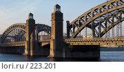 Купить «Мост Петра Великого через Неву в Санкт-Петербурге», эксклюзивное фото № 223201, снято 2 декабря 2006 г. (c) Александр Алексеев / Фотобанк Лори
