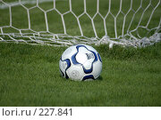 Купить «Футбольный мяч лежит на траве у сетки ворот», фото № 227841, снято 3 июля 2004 г. (c) Виктор Филиппович Погонцев / Фотобанк Лори