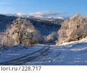 Купить «Зимний пейзаж с дорогой», фото № 228717, снято 23 ноября 2005 г. (c) Илья Троицкий / Фотобанк Лори