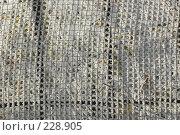 Купить «Металлическая решетка в инее», фото № 228905, снято 9 ноября 2005 г. (c) Вадим Лигай / Фотобанк Лори