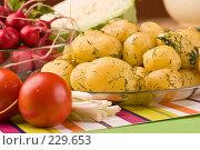 Купить «Молодой картофель», фото № 229653, снято 17 июля 2005 г. (c) Кравецкий Геннадий / Фотобанк Лори