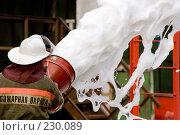 Купить «Пожарный льет пену из пожарного шланга», фото № 230089, снято 20 марта 2008 г. (c) Евгений Батраков / Фотобанк Лори