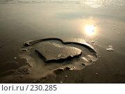 Купить «Сердце», фото № 230285, снято 19 июня 2007 г. (c) Книжников Борис / Фотобанк Лори