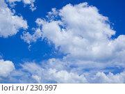 Купить «Голубое небо», фото № 230997, снято 13 июля 2007 г. (c) Валерия Потапова / Фотобанк Лори
