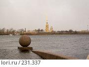 Купить «Санкт-Петербург, затопленный символ города», фото № 231337, снято 3 февраля 2008 г. (c) Андрюхина Анастасия / Фотобанк Лори