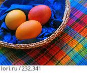 Купить «Пасхальный набор. Крашеные яйца в плетеной корзине», фото № 232341, снято 25 января 2007 г. (c) only / Фотобанк Лори