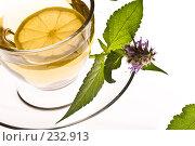 Купить «Травяной чай», фото № 232913, снято 22 июля 2005 г. (c) Кравецкий Геннадий / Фотобанк Лори