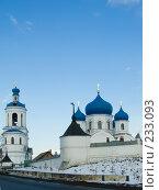 Купить «Боголюбовский женский монастырь», фото № 233093, снято 21 марта 2008 г. (c) Яков Филимонов / Фотобанк Лори