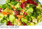 Купить «Свежий салат на тарелке», фото № 233237, снято 28 января 2008 г. (c) Александр Телеснюк / Фотобанк Лори