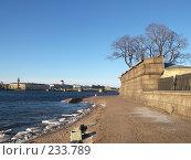 Купить «Нева, омывающая Заячий остров», фото № 233789, снято 26 февраля 2008 г. (c) Бяков Вячеслав / Фотобанк Лори