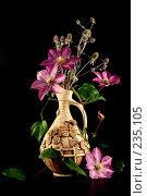 Купить «Композиция с клематисом в кувшине», фото № 235105, снято 27 июля 2007 г. (c) Елена Блохина / Фотобанк Лори