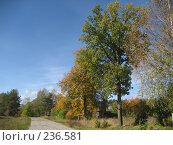 Купить «Дорога», фото № 236581, снято 23 сентября 2007 г. (c) Юлия Козинец / Фотобанк Лори
