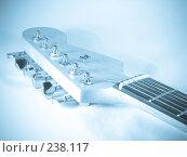 Купить «Гриф гитары», фото № 238117, снято 31 марта 2008 г. (c) Хижняк Сергей / Фотобанк Лори