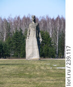 Купить «Латвия. Саласпилс. Мемориал Матери и ребенку», фото № 239117, снято 29 марта 2008 г. (c) maruta bekina / Фотобанк Лори