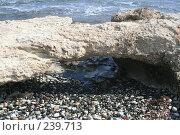 Купить «На каменистом пляже», фото № 239713, снято 17 февраля 2008 г. (c) Андрей Ильинский / Фотобанк Лори