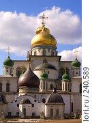 Купить «Истра. Воскресенский собор Ново-Иерусалимского монастыря. Восточный фасад», фото № 240589, снято 29 марта 2008 г. (c) Julia Nelson / Фотобанк Лори