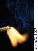 Купить «Спичка», фото № 241377, снято 19 февраля 2020 г. (c) Андрей Доронченко / Фотобанк Лори