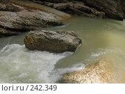 Купить «Республика Адыгея. Гуамское ущелье», фото № 242349, снято 1 мая 2006 г. (c) Виктор Филиппович Погонцев / Фотобанк Лори