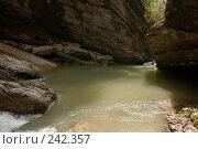 Купить «Республика Адыгея. Гуамское ущелье», фото № 242357, снято 1 мая 2006 г. (c) Виктор Филиппович Погонцев / Фотобанк Лори