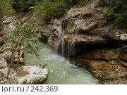 Купить «Республика Адыгея. Гуамское ущелье», фото № 242369, снято 1 мая 2006 г. (c) Виктор Филиппович Погонцев / Фотобанк Лори