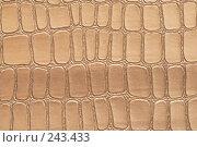 Купить «Текстура крокодиловой кожи», фото № 243433, снято 13 марта 2008 г. (c) Tatiana Lykova / Фотобанк Лори