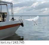 Купить «Морской пейзаж с лодкой и летящей птицей», фото № 243745, снято 16 марта 2008 г. (c) Татьяна Белова / Фотобанк Лори