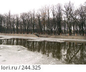 Купить «Река», фото № 244325, снято 27 февраля 2008 г. (c) Бяков Вячеслав / Фотобанк Лори