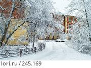 Купить «Старое здание на территории Политехнического института, Санкт-Петербург», фото № 245169, снято 27 января 2008 г. (c) Ольга Красавина / Фотобанк Лори