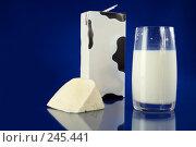 Купить «Молоко и сыр», фото № 245441, снято 5 апреля 2008 г. (c) Goruppa / Фотобанк Лори