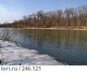 Купить «Весенняя Уссури», фото № 246121, снято 8 апреля 2008 г. (c) Олег Рубик / Фотобанк Лори