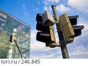 Купить «Светофор в современном городе», фото № 246845, снято 18 августа 2007 г. (c) Александр Телеснюк / Фотобанк Лори