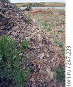 Ириклинское водохранилище (2007 год). Стоковое фото, фотограф RuS / Фотобанк Лори