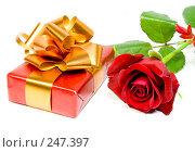 Купить «Подарок», фото № 247397, снято 31 августа 2007 г. (c) паша семенов / Фотобанк Лори