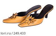 Купить «Женские туфли», фото № 249433, снято 21 мая 2018 г. (c) yelena demyanyuk / Фотобанк Лори