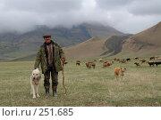 Купить «Пастух и собака кавказский волкодав охраняет стадо коров в горах Дагестана», фото № 251685, снято 15 мая 2007 г. (c) Виктор Филиппович Погонцев / Фотобанк Лори