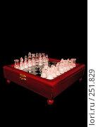 Купить «Шахматы на зеркальной, деревянной доске», фото № 251829, снято 9 апреля 2008 г. (c) Лебедев Максим / Фотобанк Лори