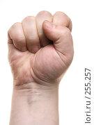 Купить «Сжатый кулак», фото № 255257, снято 7 июля 2020 г. (c) Роман Сигаев / Фотобанк Лори