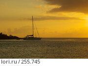 Купить «Яхта на стоянке», фото № 255745, снято 16 февраля 2006 г. (c) Николай / Фотобанк Лори