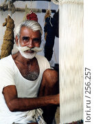 Купить «Индийский ткач», эксклюзивное фото № 256257, снято 19 сентября 2018 г. (c) Free Wind / Фотобанк Лори