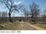 Купить «Эстония. Пюхтицкий Успенский женский монастырь», фото № 257785, снято 19 апреля 2008 г. (c) Игорь Соколов / Фотобанк Лори