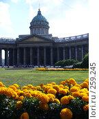 Купить «Казанский собор», фото № 259245, снято 12 августа 2006 г. (c) Алексей Семьёшкин / Фотобанк Лори